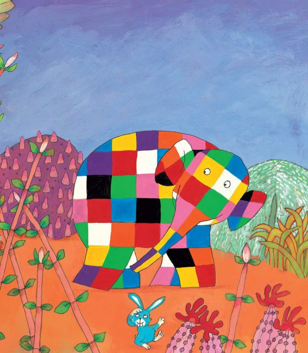 Elmer and the Rainbow - paperback