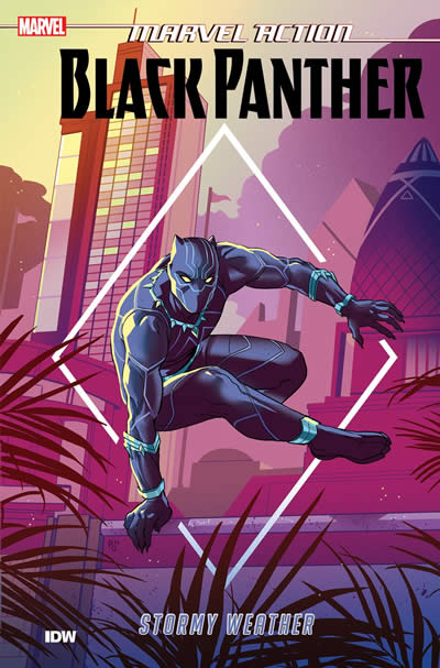 MARVEL: BLACK PANTHER: STORMY WEATHER (BOOK 1)