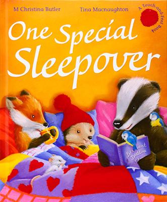 ONE SPECIAL SLEEPOVER